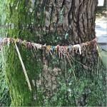 鳥飼八幡宮/アクセスが便利!福岡の縁結び&パワースポットの神社